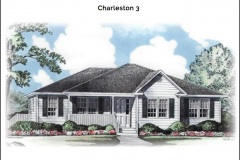 1_charleston